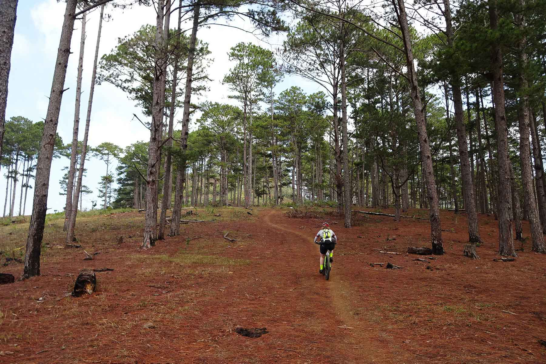 Silk and Elephant road cycling tour from Dalat