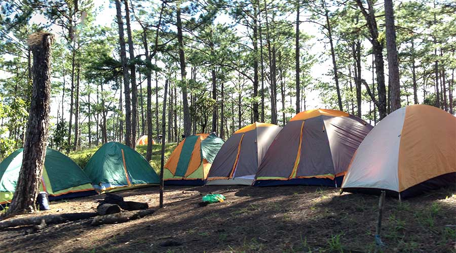 Dalat camping during jungle fever tour