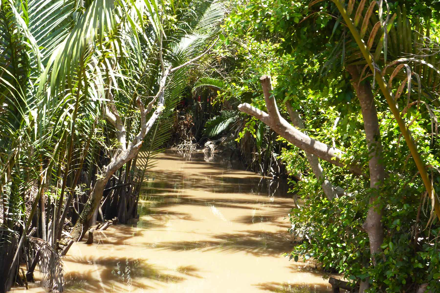 Mekong Delta discover tour with small group from Saigon | TuraVietnam