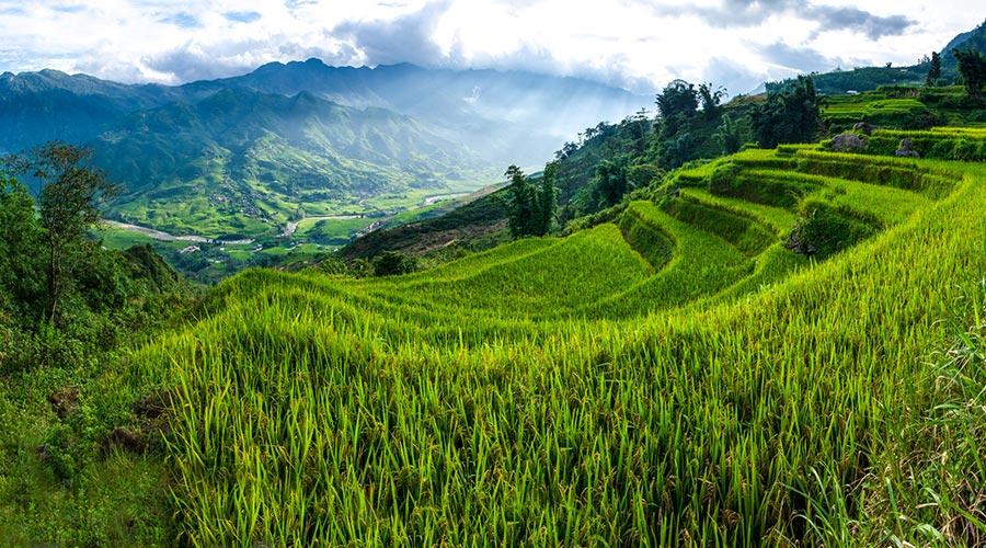 trekking in Sapa in in Vietnam top 10 things to do