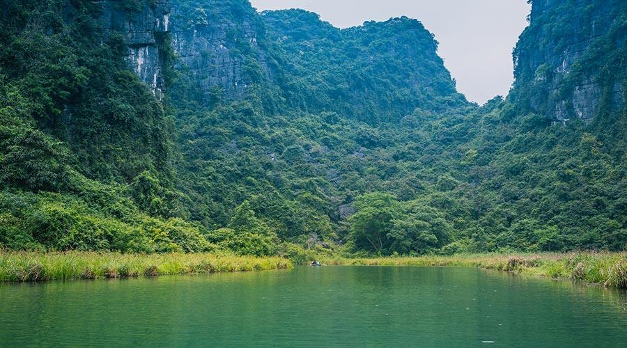 Tran An green forest