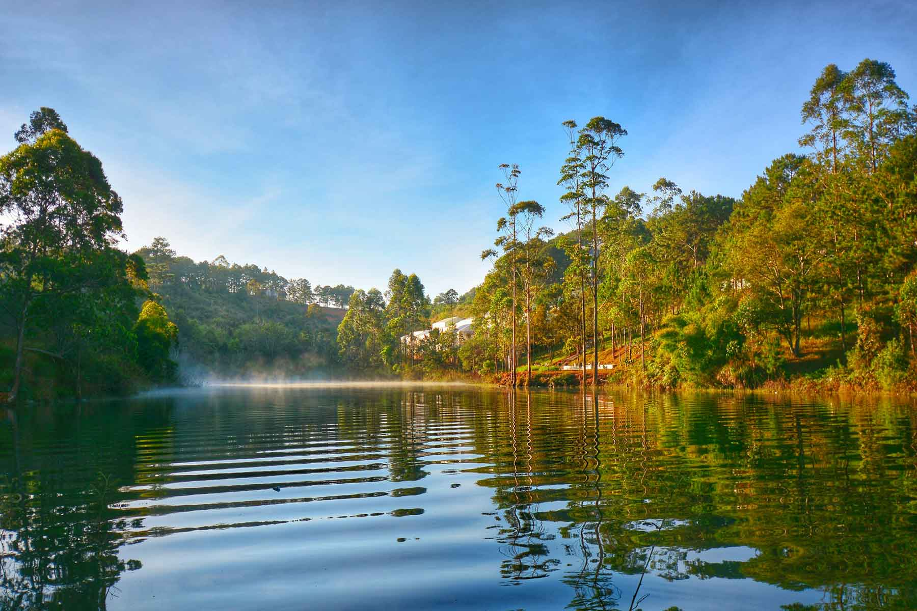 Tuyen Lam trekking dalat jungle fever