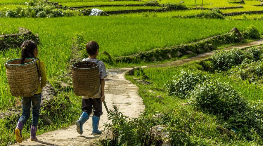 kinds in Ta Phin near Sapa