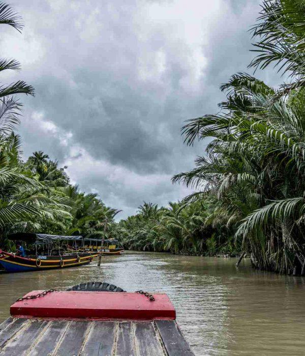 Mekong Delta VIP tour